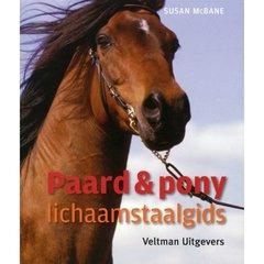 Bücher über Pferden