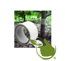 Klebeband zum Schutz von Obstbäumen gegen Schädlinge