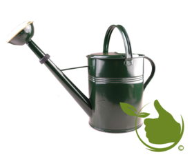 Authentisch grün lackierte Gießkanne 9 Liter mit Messingsprühkopf