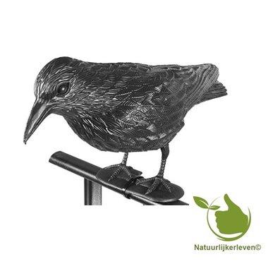 Stehend Kunststoff Raven